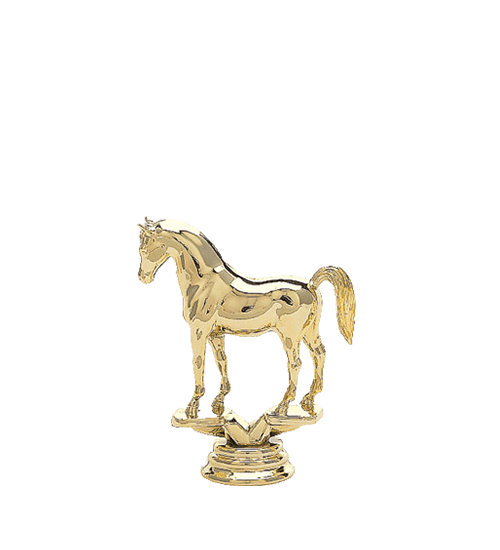 Horse, Arabian